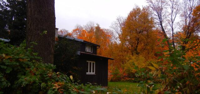 The Finnish-ed Houses