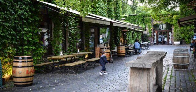 Mielżyński Wine Bar