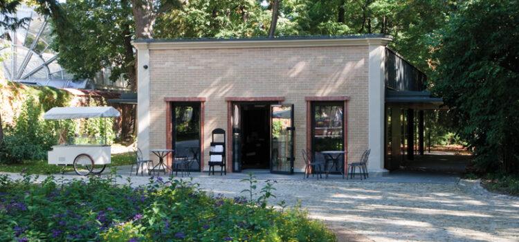 Top 5 Teahouses