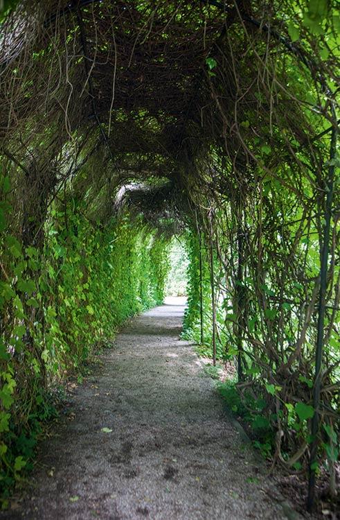 239_botanical_garden-11