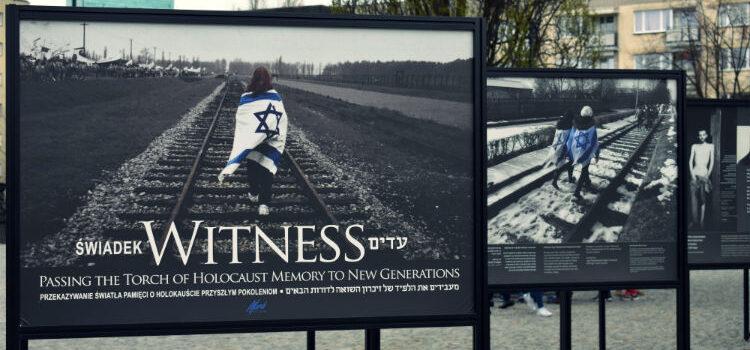 Exhibition: Witness