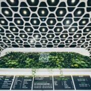Daft Cafe