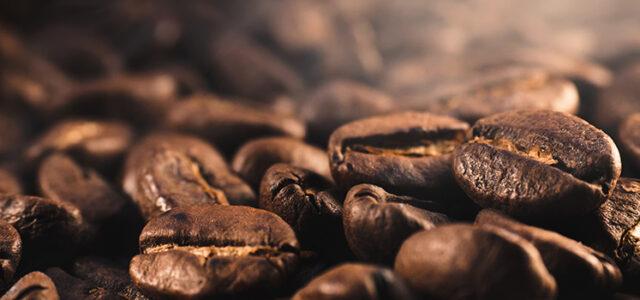 Brewer's Corner: JAVA Coffee Roasters