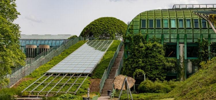 Warsaw Mourns Creator of BUW Garden