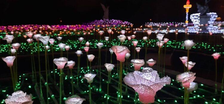 Garden of Lights Opens In Wilanów